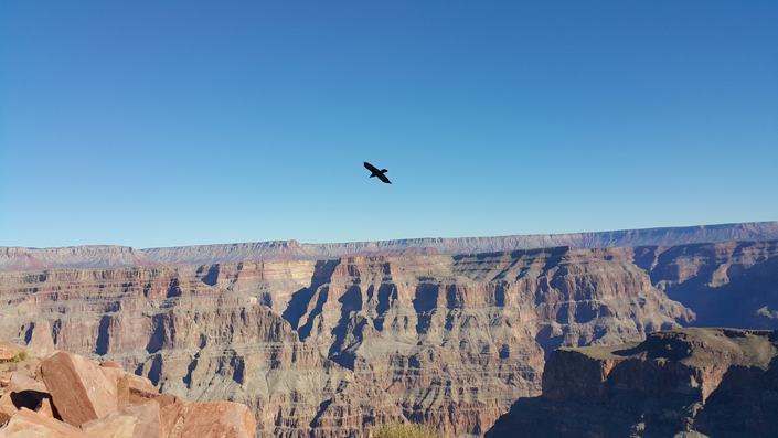 Grand-Canyon-Guano-Point